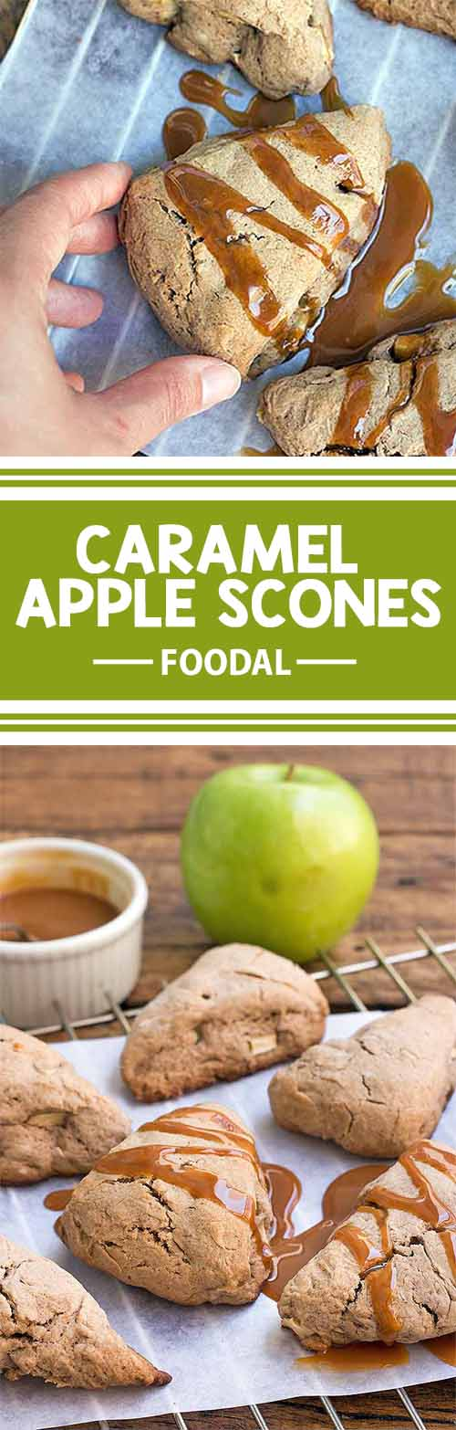 Do you love apples, gooey caramel, and the flavor of warming spices? These delectable caramel apple scones are filled with fresh apple chunks and just a hint of cinnamon. A batch of these sweet treats can be made in just 40 minutes, and they are a great way to indulge at tea time or breakfast with minimal effort. Get the recipe on Foodal today!