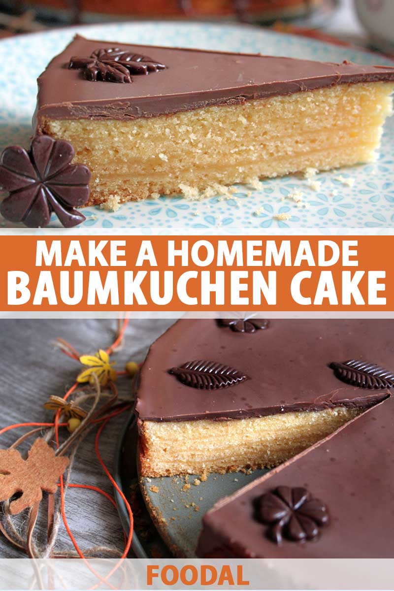Pleasing Homemade Baumkuchen Cake With Chocolate Icing Recipe Foodal Birthday Cards Printable Riciscafe Filternl
