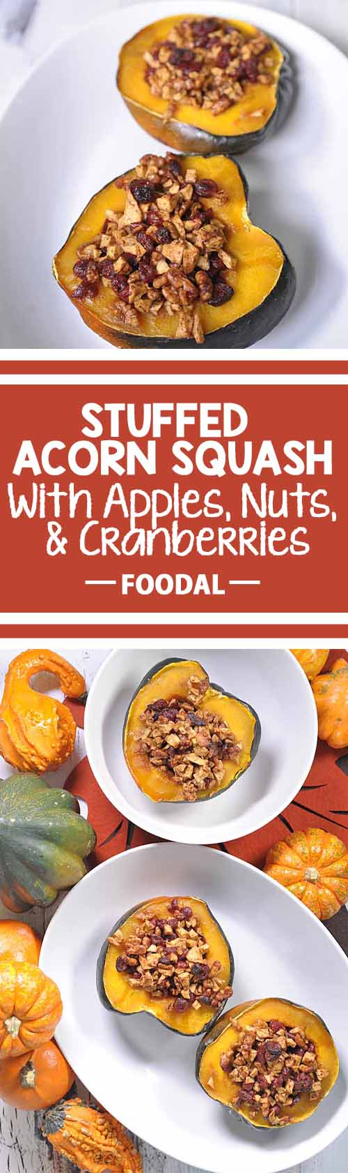 Nothing says Fall like acorn squash.. Add the traditional touch by stuffing it with cranberries, apples, and walnuts. Add a touch of cinnamon and you've got something that the whole family will love!