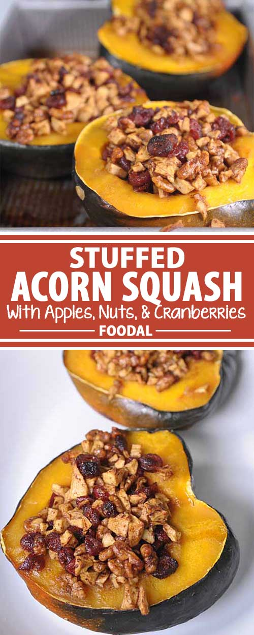 Stuffed Acorn Squash With Apples, Nuts and Cranberries