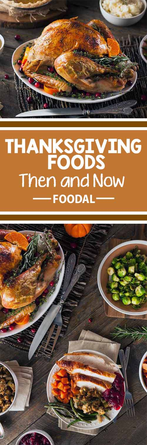 Want to learn more about the history of Thanksgiving foods, the truth about what was eaten at the earliest celebrations of this holiday, and how old harvest traditions morphed into the favorites that we set out on our tables year after year today? Then you've come to the right place! Take a trip back in time with us on Foodal, to trace these practices back to their origins, with a comparison of modern-day holiday trends.