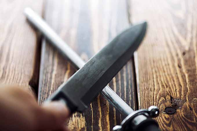 Avoid Cuts in the Kitchen and Other Dangerous Blunders   Foodal.com