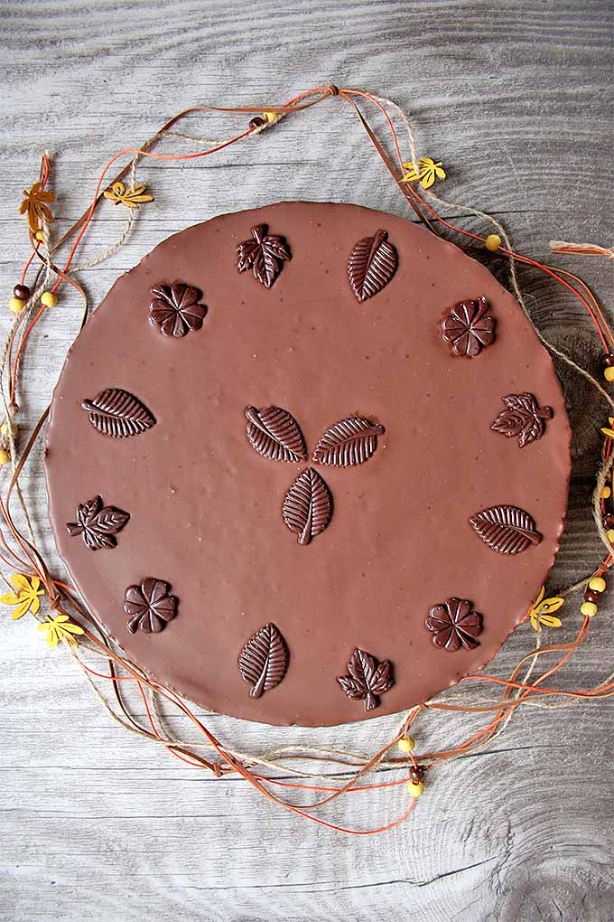 Top-down view of a German Baumkuchen cake covered in dark chocolate with molded chocolate leaf decorations.