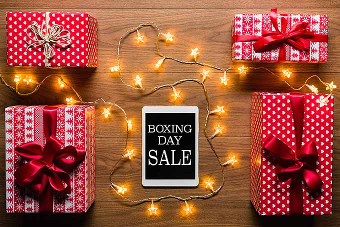 Boxing Day Sale | Foodal.com
