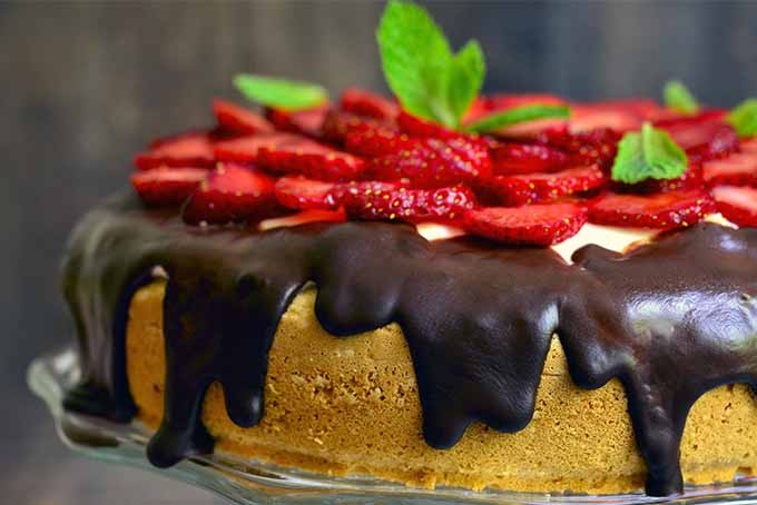Yellow Cake with Chocolate and Strawberries   Foodal.com