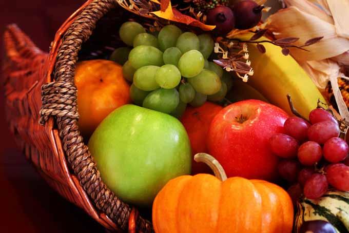 Thanksgiving Harvest Cornucopia | Foodal.com