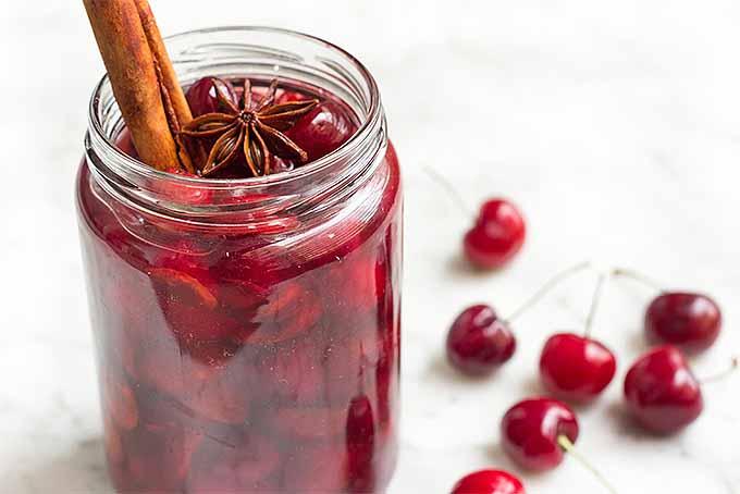 Alcohol-Free Maraschino Cherries   Foodal.com