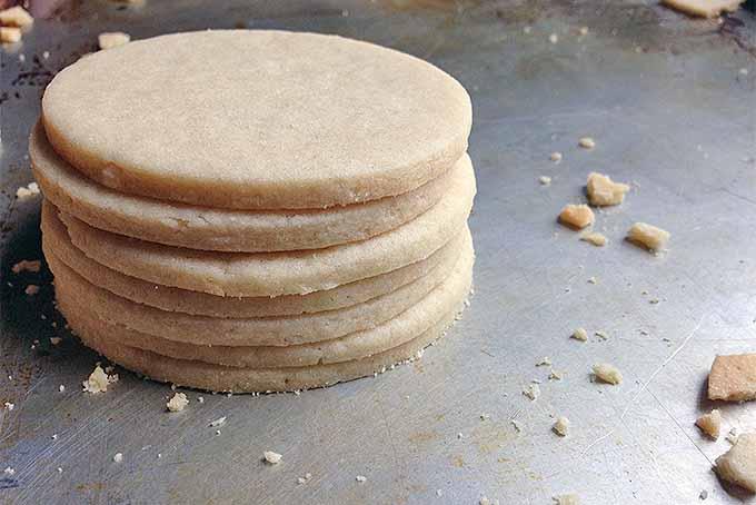 Stack of Sugar Cookies | Foodal.com