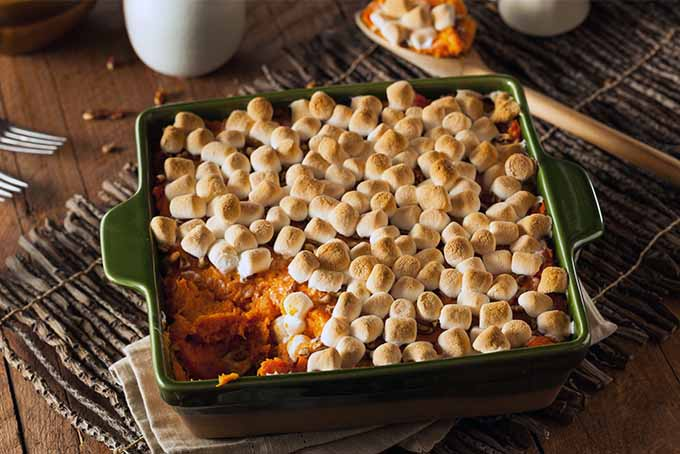 Sweet Potato Casserole for Thanksgiving | Foodal.com