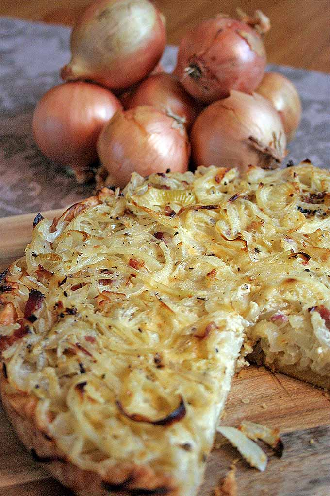 Close up, oblique view of a traditional German onion tart.