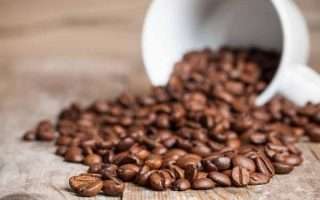 Coffee Terms and Definitions That You Should Know | Foodal.com