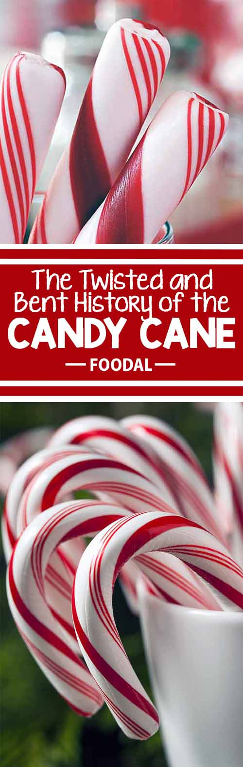 How did we get the idea for the candy cane? We hang them from our Christmas trees, hand them out as gifts, and enjoy their sweet minty flavor and characteristic crunch each winter season. But have you ever stopped to wonder how someone got the idea for these staff-shaped candies in the first place? Foodal tries to find the answer this holiday season. Read more now!