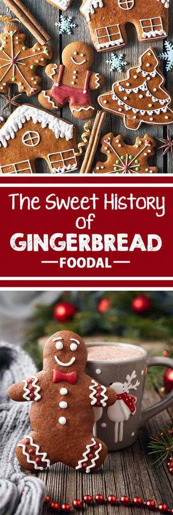 Ever wonder why we make gingerbread men each year? Before you start rolling your next batch of cutouts for the season, read all about this spicy winter dessert. Learn about its history as a longtime favorite at holiday festivals throughout the world. Read more now on Foodal!