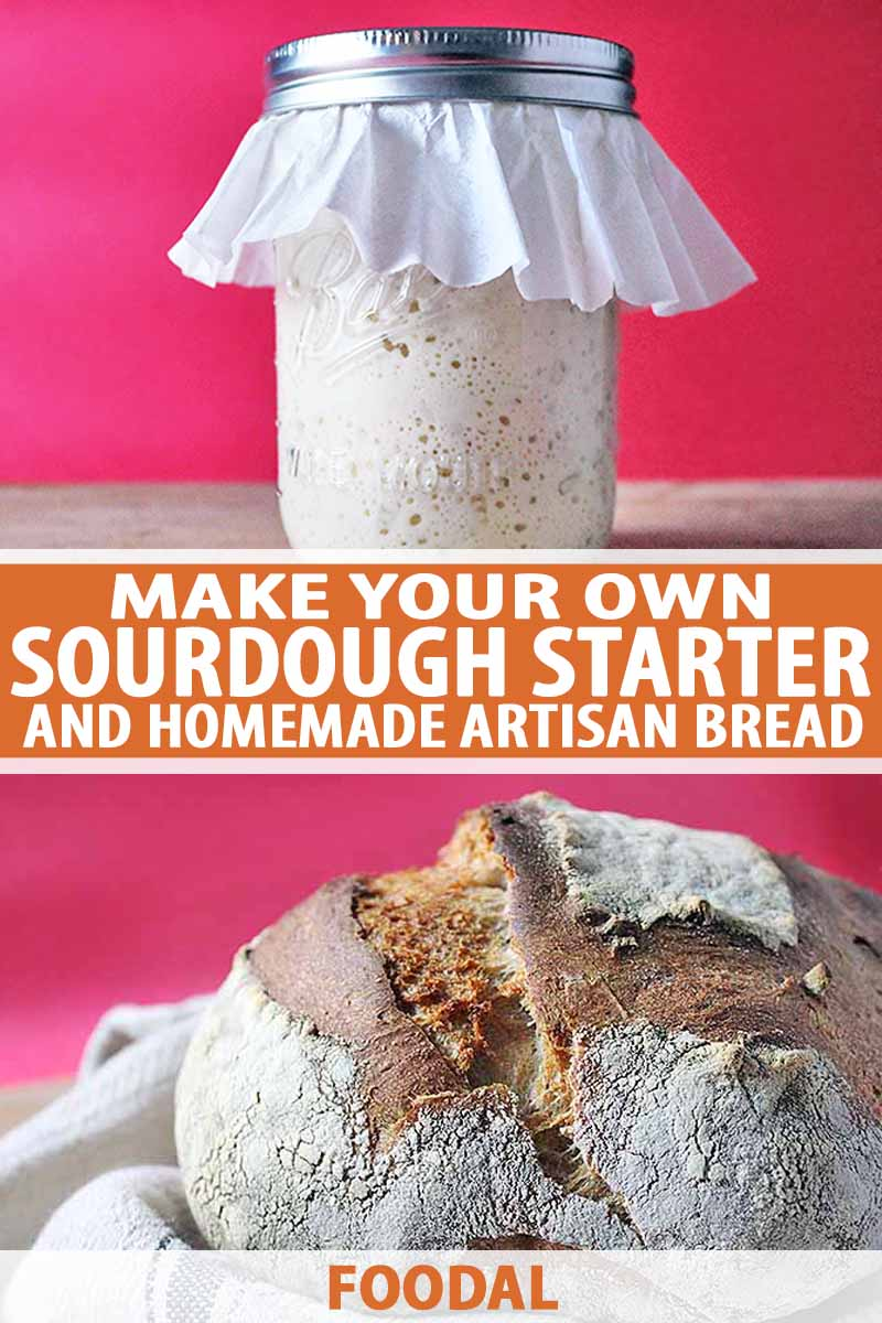 Vertical collage of two image, one of a glass jar of sourdough starter topped with a coffee filer and the other of a homemade loaf of bread nestled in a gray cloth, on a rose-colored background, printed with orange and white text at the midpoint and the bottom of the frame.