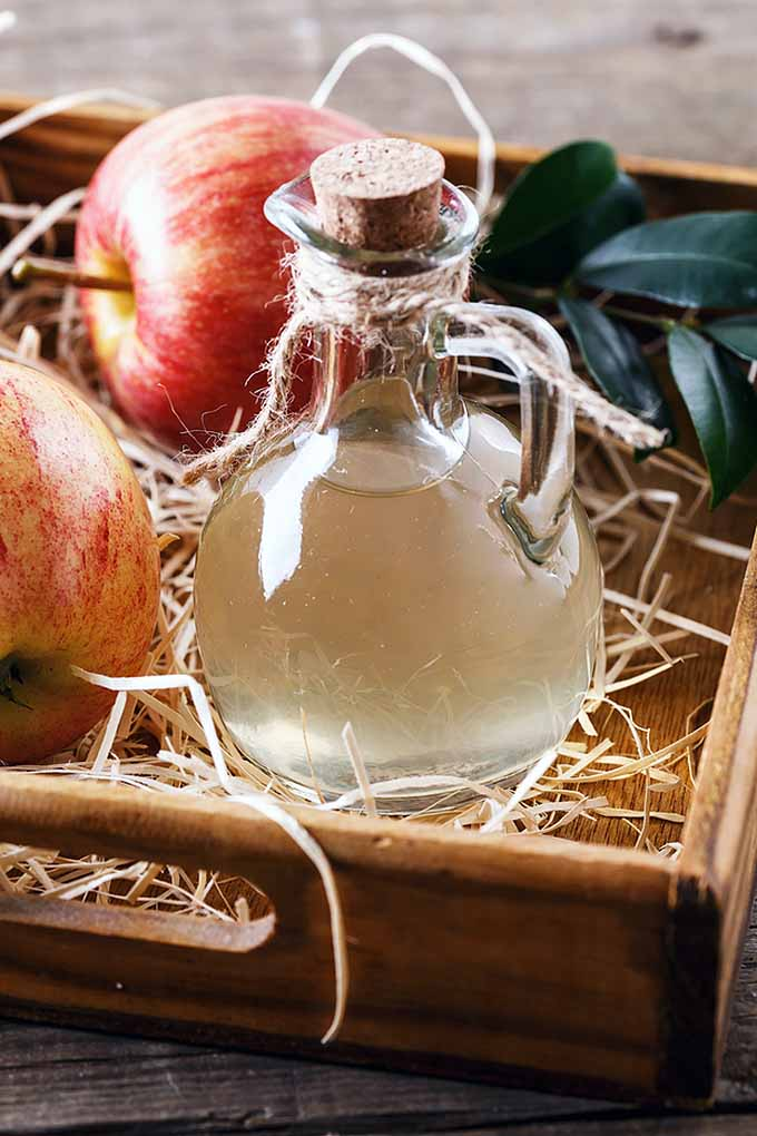 Apple cider vinegar: what's real, and what's bunk? Tons of health claims are made online about what this fermented condiment can do for your well-being. To get the facts, check out this article from Foodal to help you separate truth from fiction: https://foodal.com/knowledge/paleo/health-benefits-apple-cider-vinegar