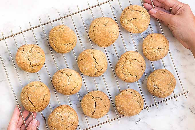 The Best Gluten-Free Ginger Cookies | Foodal.com
