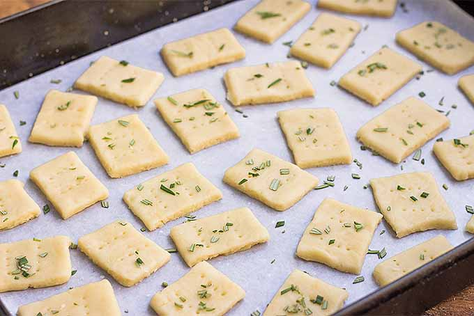 Best Parmesan and Rosemary Crackers | Foodal.com