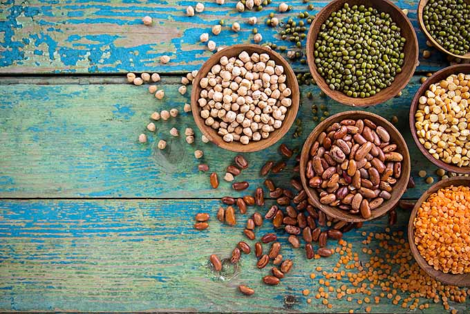 Bowls of Legumes for Heart Health | Foodal.com