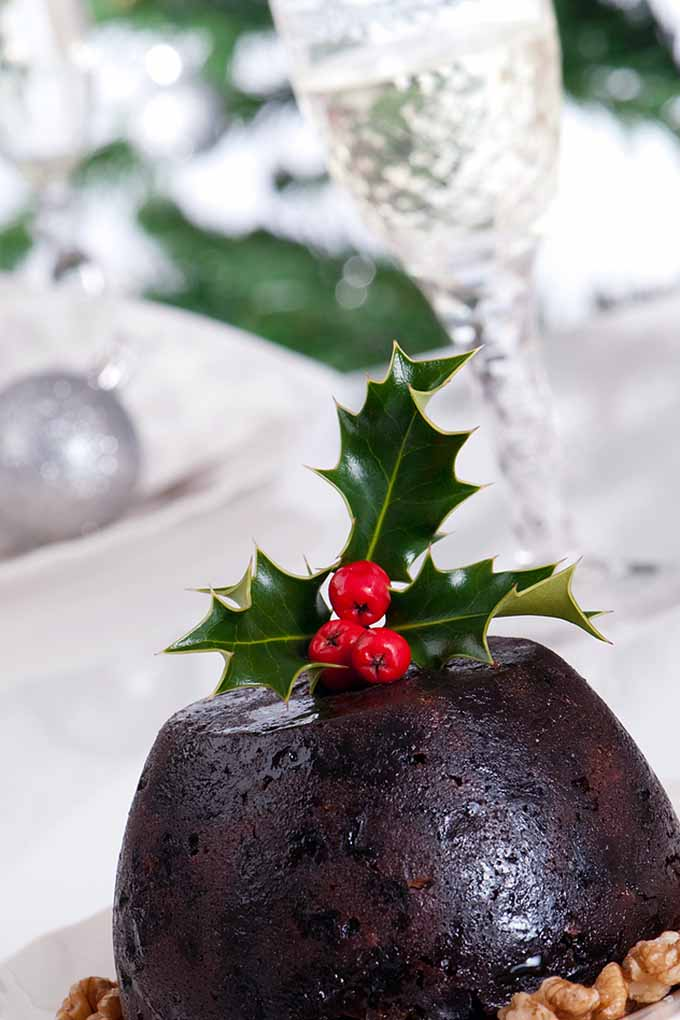 Are you a lover of figgy pudding? Or do you regard it as one of those more repulsive Christmas treats that you think you'll never understand? Learn more - or, give this scrumptious dessert a chance - by reading all about its colorful history here: https://foodal.com/holidays/christmas/figgy-pudding/