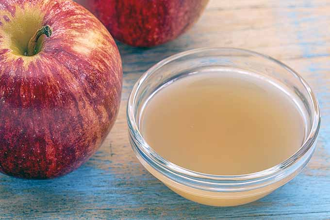 Filtered Apple Cider Vinegar | Foodal.com