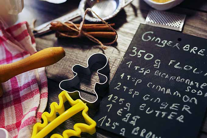 Gingerbread Recipe for Christmas | Foodal.com