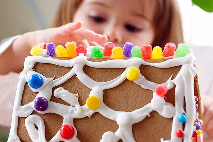 Girl Makes Gingerbread House | Foodal.com