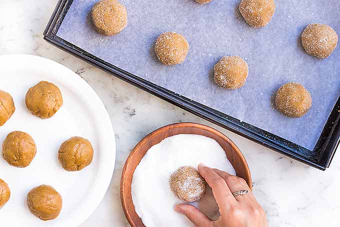 Gluten-Free Soft Ginger Cookies Recipe | Foodal.com