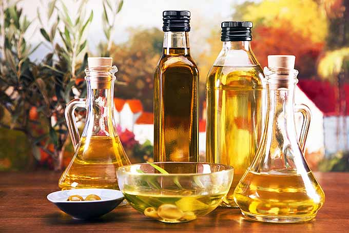 Heart Healthy Oils | Foodal.com