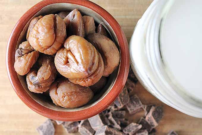 Homemade Chestnut Hot Chocolate Recipe | Foodal.com