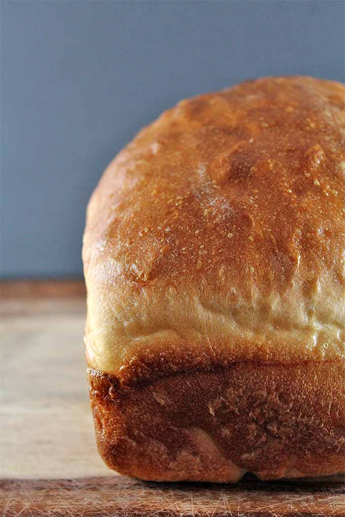 Have you always wanted to bake warm, flavorful loaves of artisan bread at home? Now's your chance! Check out our ultimate guide to baking bread: https://foodal.com/knowledge/baking/ultimate-guide-to-baking-bread/