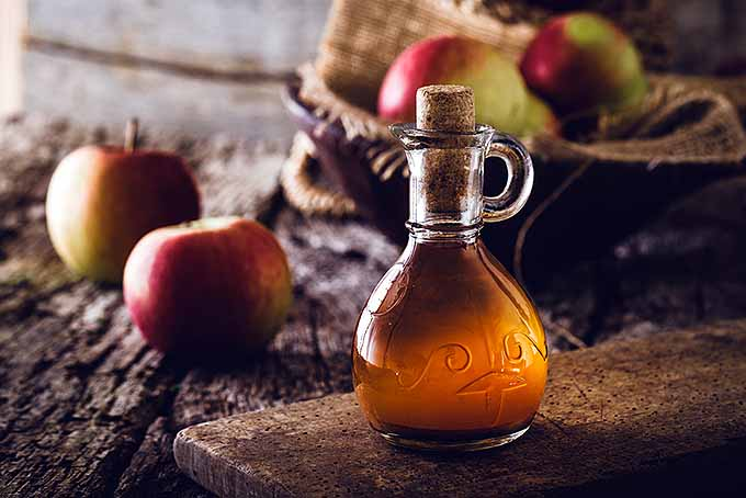 Jar of Apple Cider Vinegar | Foodal.com
