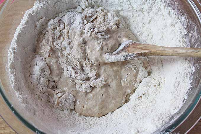 Top view of combining sourdough starter with flour to make bread dough in a large glass mixing bowl, with a wooden spoon, on a wooden countertop.