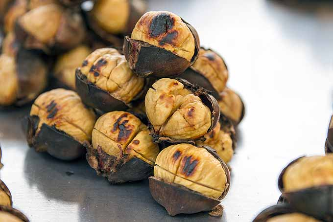 Pile of Roasted Chestnuts | Foodal.com