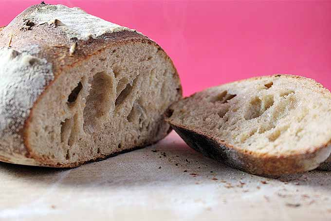 A loaf of sourdough bread sliced to reveal the airy crumb inside, on a floured board, against a red backdrop.