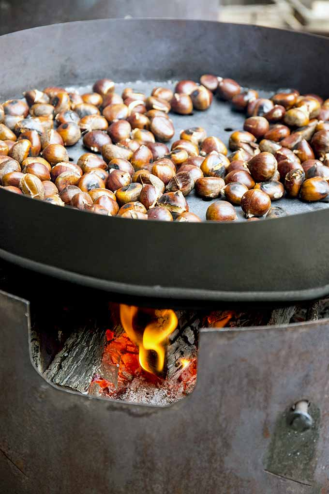 Have you hummed the holiday tune, but never really known what the real deal is with roasted chestnuts? Read this article from Foodal about their origins, history, and why the whole world thinks they're delicious come wintertime: https://foodal.com/holidays/christmas/roasted-chestnuts-a-globally-beloved-winter-treat
