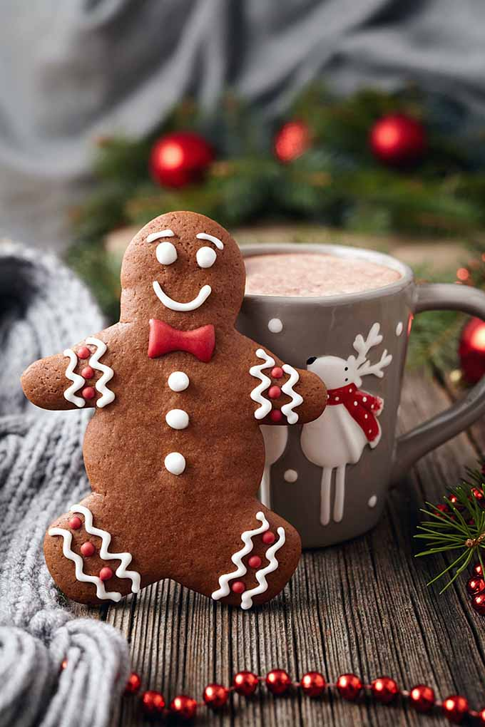 Gingerbread is one of our holiday favorites. Learn all about its fascinating history. Read more: https://foodal.com/holidays/christmas/history-of-gingerbread/
