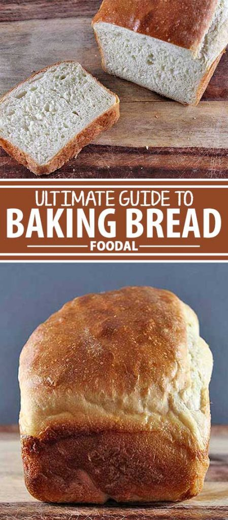 What are the main ingredients in making bread