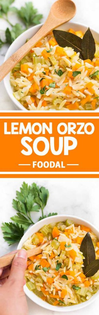 During the cold seasons, this delicious lemon orzo soup is comfort for your stomach and soul. It'll warm you up and keep you full, and best of all, it's so easy to prepare you can make it in just 40 minutes. The recipe can be easily doubled or tripled to feed a crowd. Get the recipe from Foodal today!