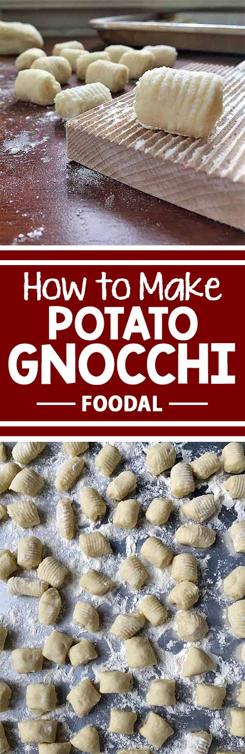 Curious about how to make potato gnocchi from scratch? We have the perfect recipe for you! Take a look at our article to get the best advice for making our doughy delights! With just potatoes, flour, eggs, and salt, these delicious dumplings may become your new Italian dinner staple. Keep reading now on Foodal!