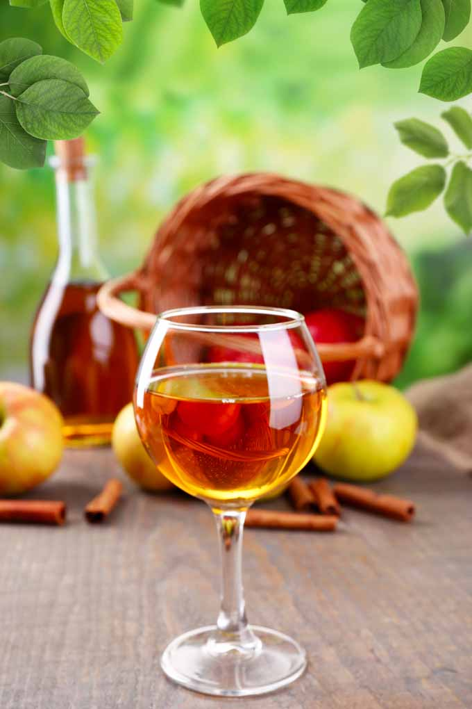 Refreshing drink ideas made with apples. Make one now. Learn more on Foodal: https://foodal.com/drinks-2/alcoholic-beverages/add-apples-to-cocktails/