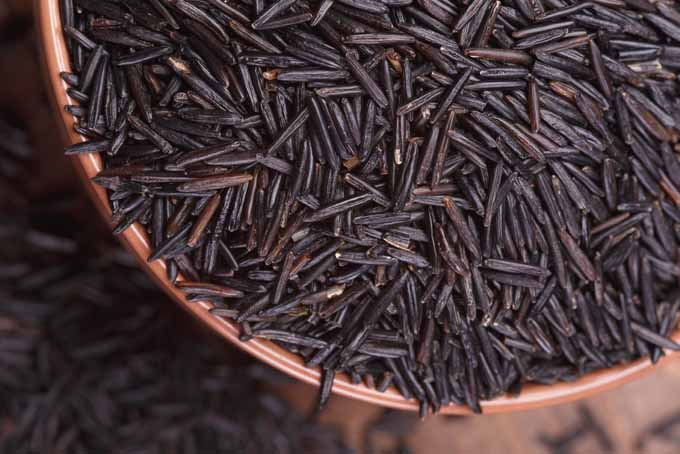 Exquisite Wild Rice | Foodal.com