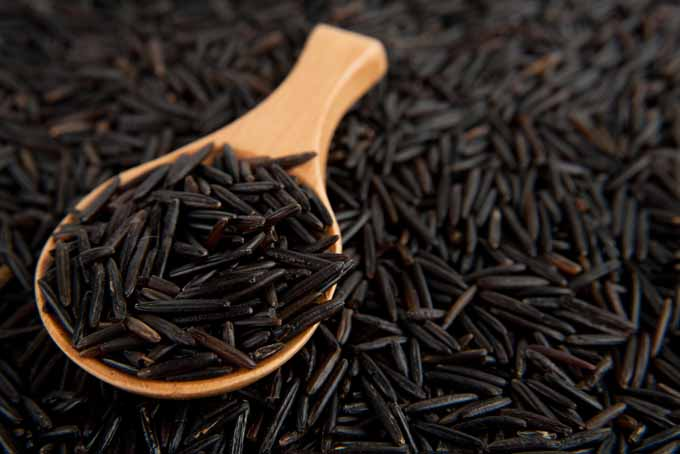 Wild Rice is a delicacy that is Healthy and flavorful. | Foodal.com