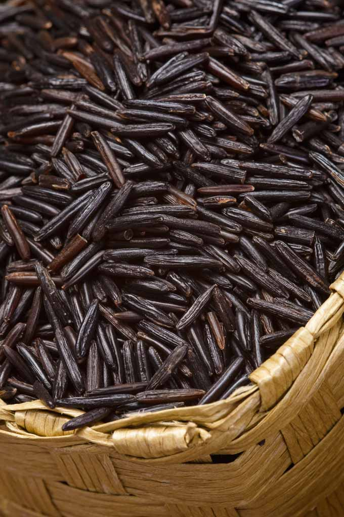 Do you know how wild rice is harvested and cooked? Learn more: https://foodal.com/knowledge/paleo/wild-rice/