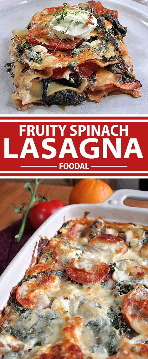Fresh and Fruity Spinach Lasagna: A Great Choice for Your Next Meat-Free Day