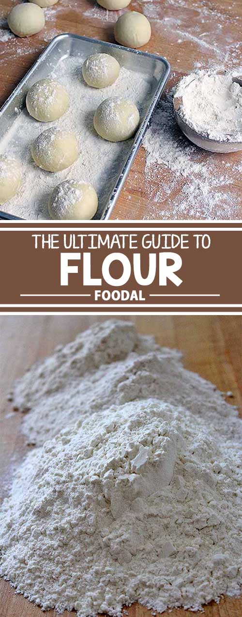 Foodal's Guide to Flour: Sifting through the Options