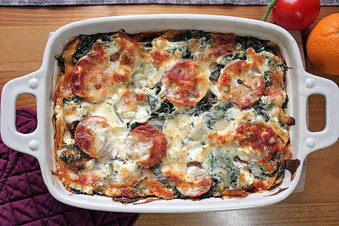 Homemade Fresh and Fruity Spinach Lasagna Recipe | Foodal.com