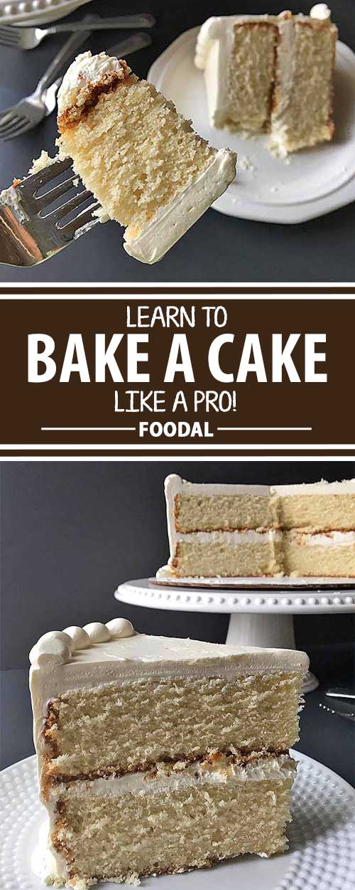 Foodal's Guide to Basic Cake Baking: Tips and Tricks to Help You Bake Like a Pro