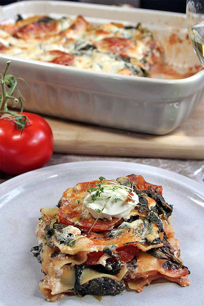 What makes this vegetarian lasagna fresh and fruity? The addition of tangy orange juice, to brighten up the sauce. Try it now or pin it for later: https://foodal.com/recipes/pasta/spinach-lasagna/