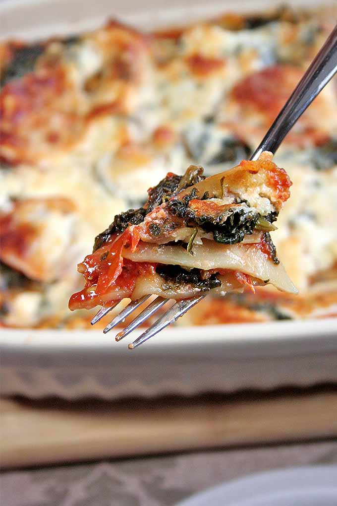 If you're a lasagna lover, you've got to try this new twist on a vegetarian classic. Check out the recipe now or pin it for later: http://foodal.com/recipes/pasta/spinach-lasagna/