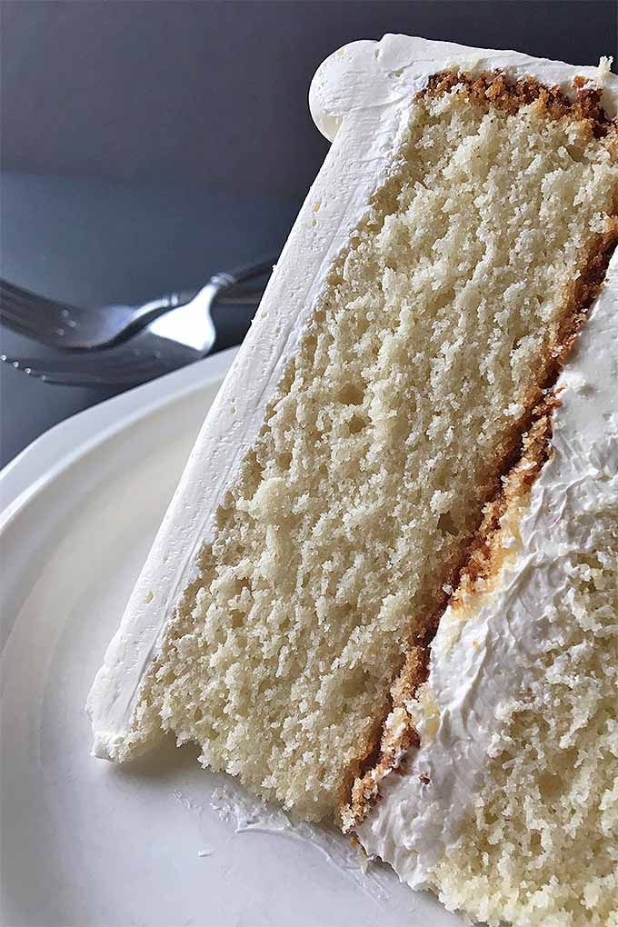 Follow our recipe to make a tender vanilla butter cake completely from scratch: https://foodal.com/recipes/desserts/vanilla-butter-cake/